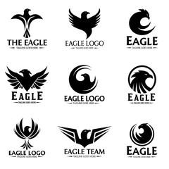 Eagle logo set design template. Vector illustration