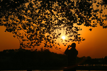 夕焼けと桜を撮る人