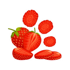 Still life with strawberries. Composition from strawberries whole, halves and chopped. Vector illustration.