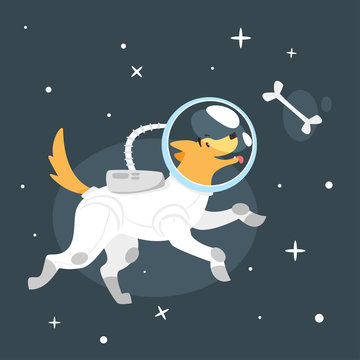 dog in space suit