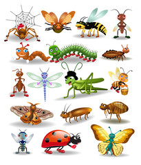 Vector collection of insects, like spider, wasp, mosquito, worm, butterfly, ladybug, fly isolated on a white background