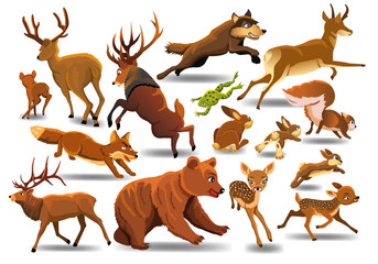 Vector set of wild forest animals like stag, bear, wolf, fox, running isolated on a white background