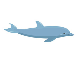 Cartoon dolphin on white background.
