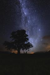 nightscape landscapr night