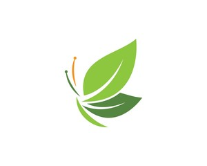 Butterfly leaf Logo Template