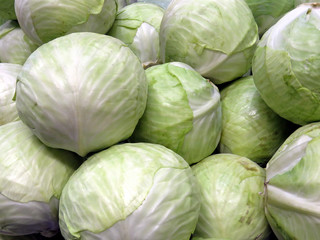 Thornhill cabbage 2018