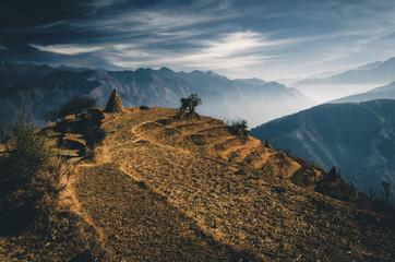 Beautiful Golden fields in Chamba, Himachal Pradesh
