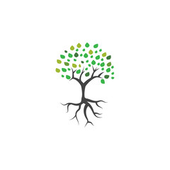 Tree and root logo icon vector template