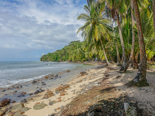 Bastimentos Island, Bocas del Toro, Panama - March 18, 2017: Lonely beach with some rocks on the shore and palm trees under a cloudy sky