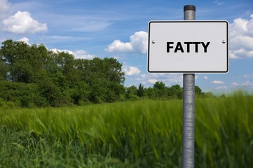 FATTY - image with words associated with the topic NUTRITION, word, image, illustration
