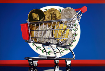 Shopping Trolley full of physical version of Cryptocurrencies (Bitcoin, Litecoin, Dash, Ethereum) and Belize Flag.