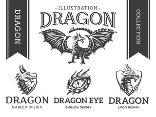 Dragon emblem, illustration, logotype, print design collection on a white background.