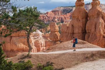 Hiker visits Bryce canyon National park in Utah, USA