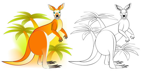 Colorful and black and white pattern for coloring. Illustration of cute kangaroo. Worksheet for children and adults. Vector image.