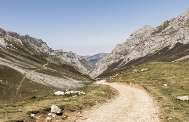 Road Along the Mountains 2