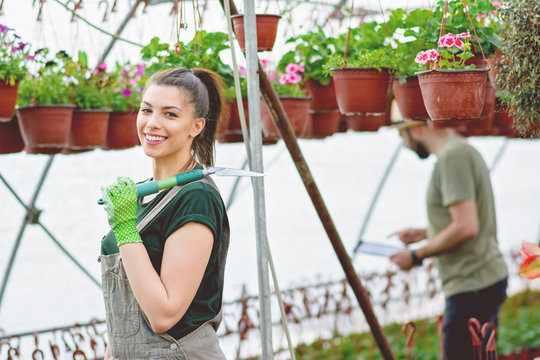 Young female gardener and her male colleague working in greenhouse, planting and taking care of flowers. Closeup, natural lighting, no retouch.