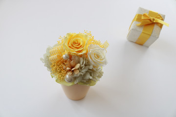 黄色いバラ 贈り物イメージ