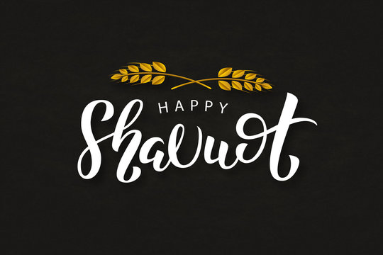 Vector realistic isolated lettering logo for Shavuot Jewish holiday with wheat for decoration and covering. Concept of Happy Shavuot.