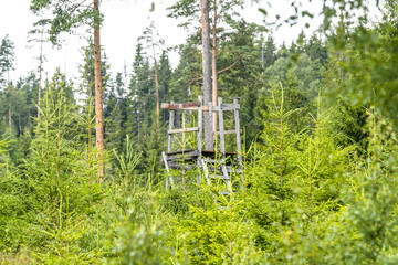 Old wooden hunting tower in a forest
