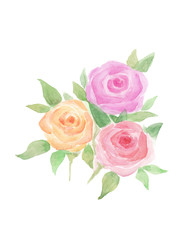 Watercolor roses with leaves. Hand painted wedding, valentine's day romanitc card
