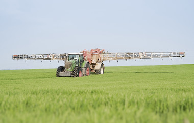 spraying wheat field
