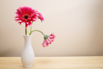Gerbera flowers in a white vase on a wood table