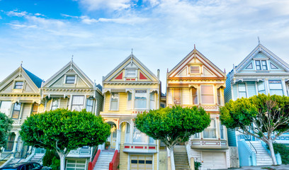 Poster de jardin San Francisco Late afternoon sun light up a row of colorful Victorian houses known as Painted Ladies across from Alamo Square. The historic houses were built between 1892 and 1896.