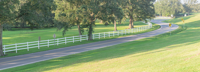 Panorama view a winding road, grassy lawn with white country style wooden fence. White fences on green lush oak trees at farm ranch land field in Louisiana, USA