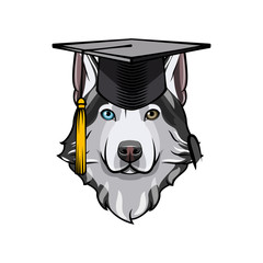 Siberian Husky graduate. Graduation cap hat. Dog breed. Vector.