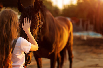 Foto auf Leinwand Pferde Young blonde girl stroking a brown horse.