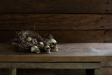 Little Skulls in and out bird nest on the wooden plank which has dim light and space for message