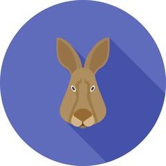 Rabbit Face icon