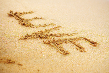 love on sand.