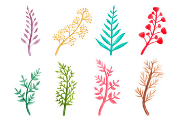 Watercolor colorful floral elements leaves set isolated on white background. Drawing by hand and painted illustration.