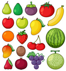 Tropical Fruits on White Background