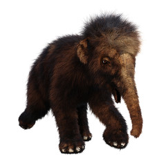 3D Rendering Woolly Mammoth Baby on White