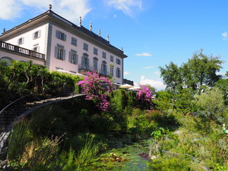 Beauty historical building and beauty purple flowers, exotic plants at Brissago island landscape near in Switzerland