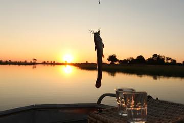 A fisherman reels in a catfish in the Okavango Delta, Botswana
