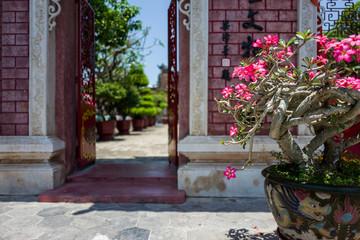 A temple in Hoi An, Vietnam.
