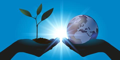 environnement - terre - plante - nature - globe - écologie - pousse - monde - climat - vie