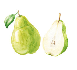 Hand drawn watercolor pears isolated on white background. Green fruits with leaf and cut half. Food illustration.