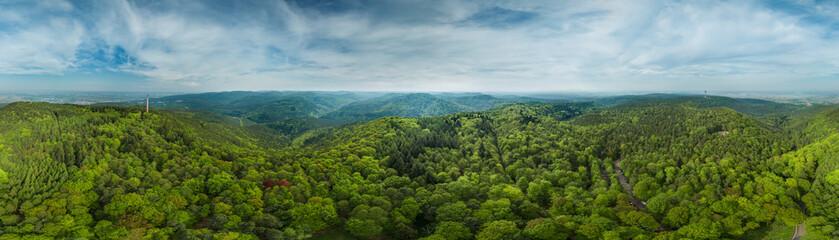 360° Luftbild Panorama Pfälzer Wald