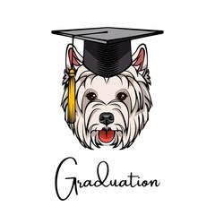West Highland Terrier silhouette graduate. Graduarion cap hat. Dog portrait. Vector.