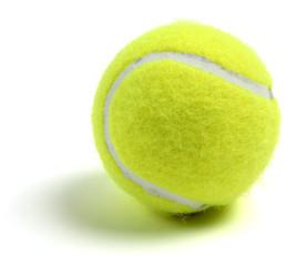Single tennis ball on white