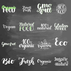 Eco concept lettering set on chalkboard background. Blackboard lettering writing handwritten text, vector illustration. Logo for healthy eat bar, restaurant, shops and printing and digital products