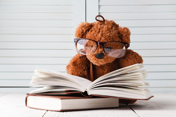 Kid education concept, eddy bear with book