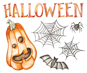 Halloween hand drawn collection isolated on white background. Watercolor illustration. Pumpkin, spider, bat, spider's web