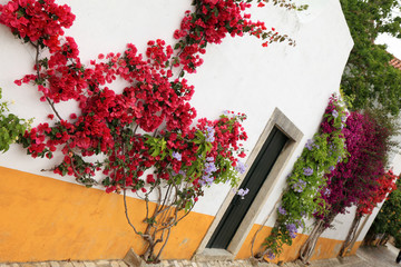 Obidos street, Portugal