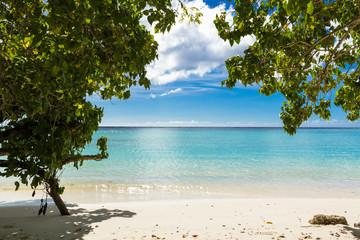 南国の海と木陰 グアム
