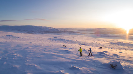 skiing in the arctic